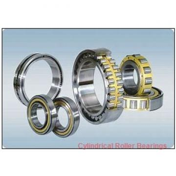3.543 Inch | 90 Millimeter x 6.299 Inch | 160 Millimeter x 1.575 Inch | 40 Millimeter  CONSOLIDATED BEARING NU-2218E M  Cylindrical Roller Bearings