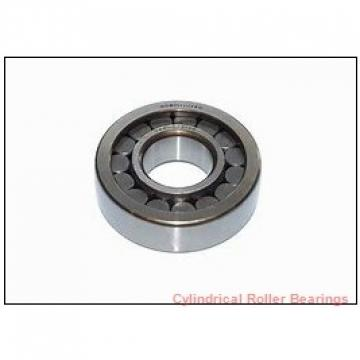 3.74 Inch | 95 Millimeter x 6.693 Inch | 170 Millimeter x 1.26 Inch | 32 Millimeter  CONSOLIDATED BEARING NU-219  Cylindrical Roller Bearings